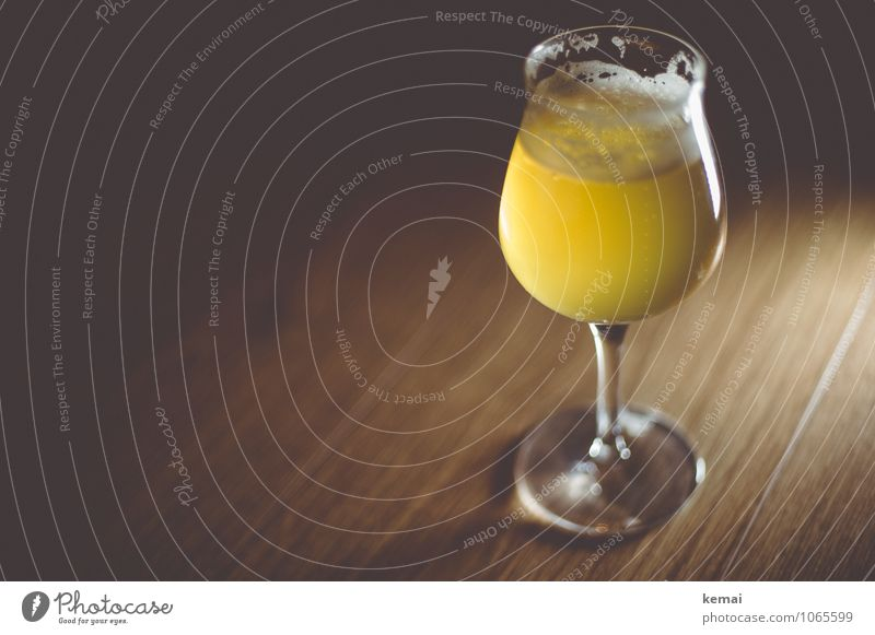 stylish Beverage Cold drink Alcoholic drinks Beer Glass Beer glass beer tulip Fresh Glittering Delicious Beautiful Yellow Calm Foam Froth Colour photo