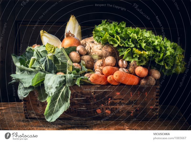 Organic vegetable box Food Vegetable Lettuce Salad Nutrition Organic produce Vegetarian diet Diet Style Design Healthy Eating Life Summer Garden Yellow Nature