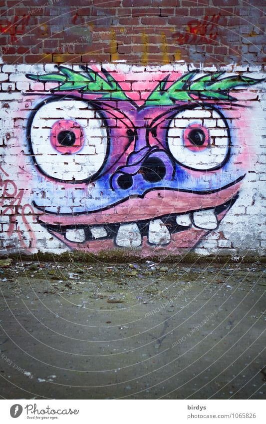 weird bird Art Youth culture Graffiti Wall (barrier) Wall (building) Brick wall Exceptional Exotic Creepy Funny Crazy Bizarre Colour Culture Revolt Town Eyes