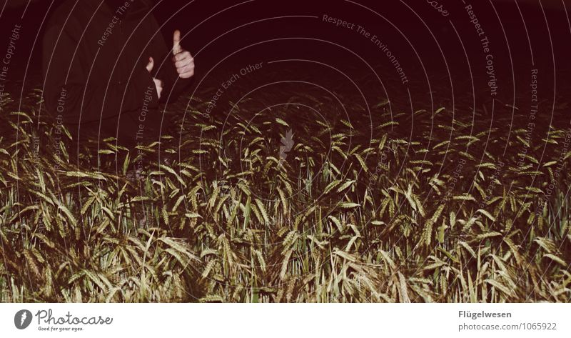 Thumbs up in the grain field OK Cool Field Grain Wheat Barley Rye Night Dark Joie de vivre (Vitality) To enjoy Hand super