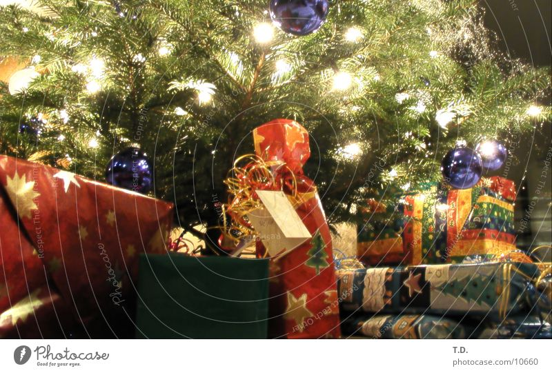 Christmas & Advent Feasts & Celebrations Happiness Gift Leisure and hobbies Fir tree Packaged Donate