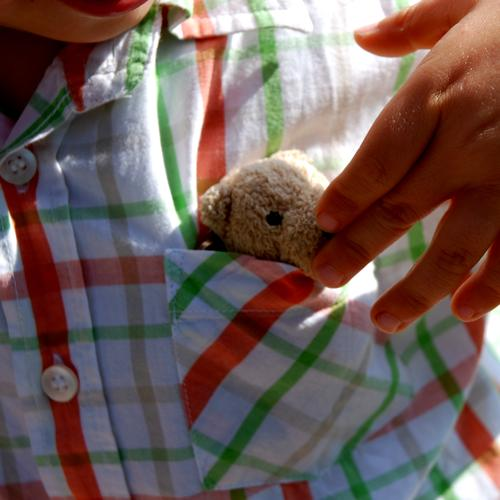 Hide yourself Teddy bear Cuddly toy Child Toddler Childlike Toys Cuddling Cute Small Pelt Sweet Offspring Good luck charm Playing Gift Shirt Hand