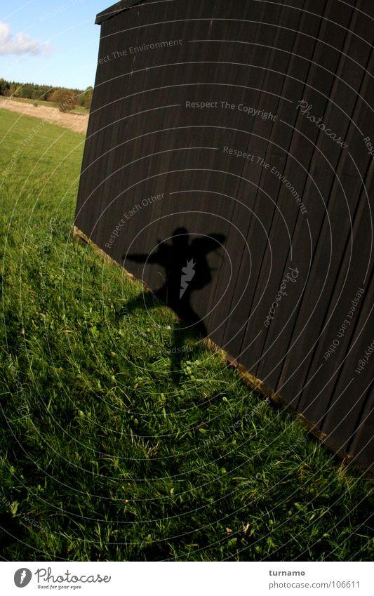 Green Summer Joy Meadow Playing Jump Tall Hop Exuberance