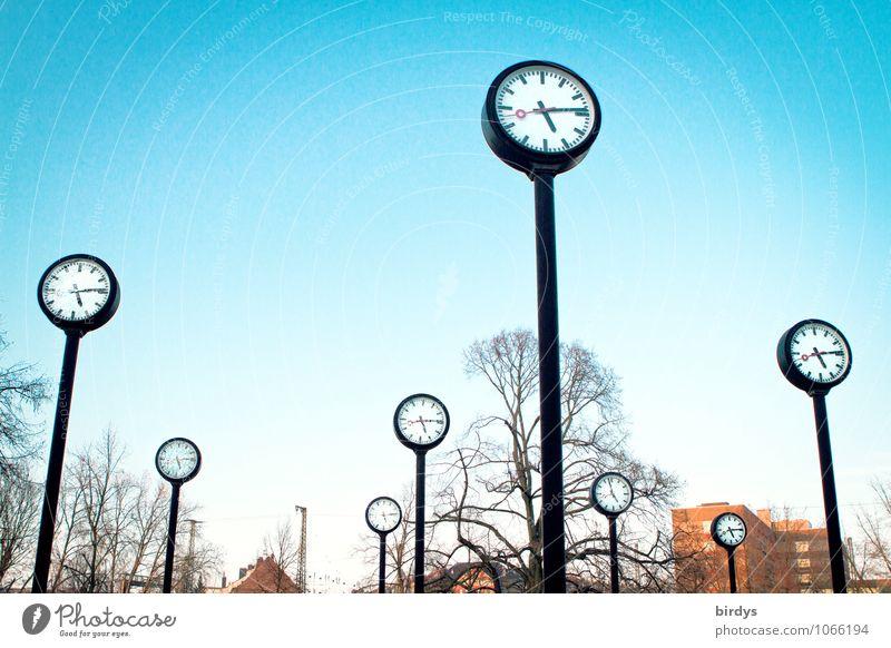 Clocks in the Uhrenpark Düsseldorf , bright blue sky Clock face Time Stress lifetime Tree Prompt time management time change Precision Park Large Round