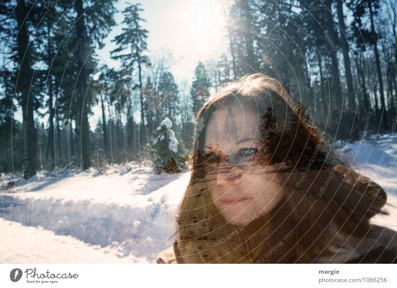 Human being Woman Youth (Young adults) Young woman Tree Sun Calm Winter Forest Face Adults Eyes Life Lanes & trails Snow Feminine