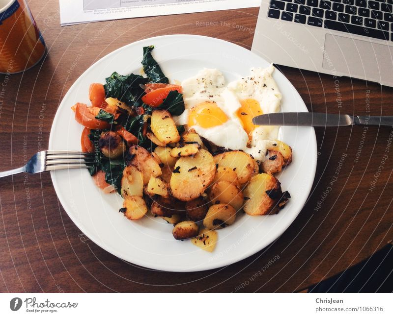 student meals Food Vegetable Herbs and spices Cooking oil Hash brown potatoes Fried egg sunny-side up Tomato Mangold Nutrition Breakfast Lunch Organic produce