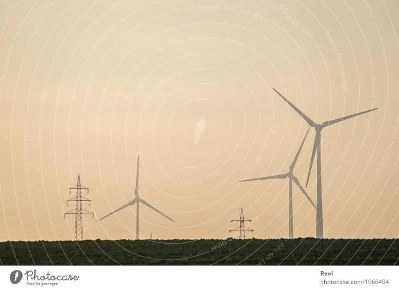 At dusk Landscape Meadow Pinwheel Wind energy plant Renewable energy Energy Eco-friendly Environmental protection Electricity Electricity pylon Orange Future