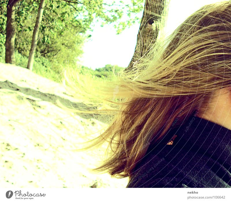 Nature Beautiful Sun Vacation & Travel Beach Joy Calm Forest Autumn Freedom Hair and hairstyles Bright Blonde Wind Free Happiness