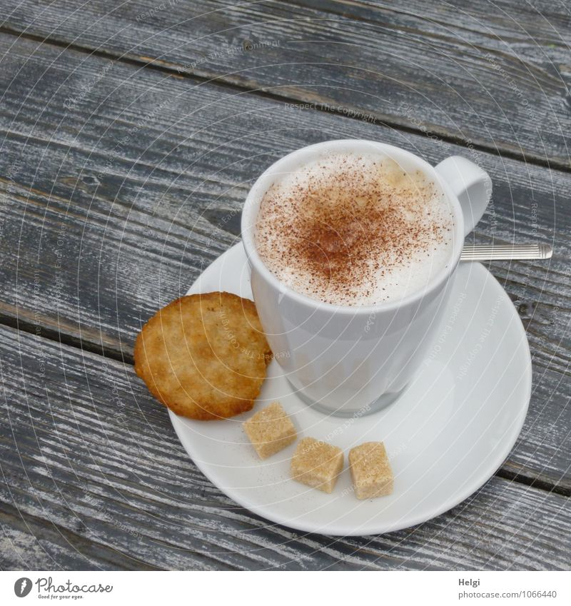 cappuic Food Dough Baked goods Candy Cookie Sugar Cappuccino Foam To have a coffee Beverage Hot drink Crockery Plate Cup Spoon Table Wood Fragrance To enjoy