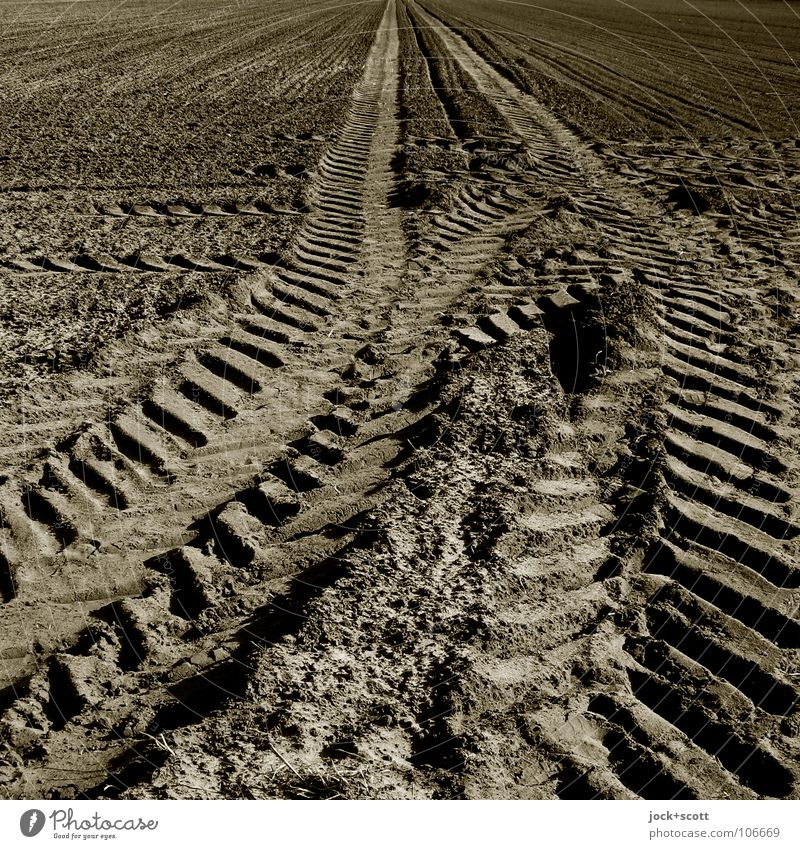prepare a field for planting or cultivation Far-off places Movement Lanes & trails Line Brown Germany Field Earth Power Culture Agriculture Tracks Pure Hallway