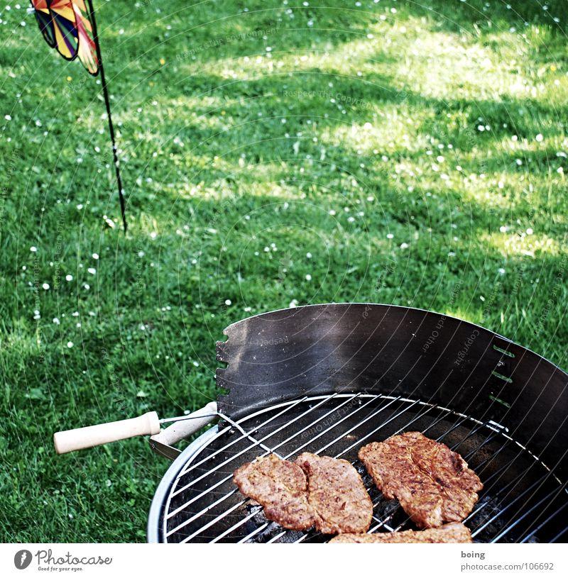 Blue Vacation & Travel White Green Summer Flower Joy Clouds Black Meadow Nutrition Warmth Grass Gray Garden Legs