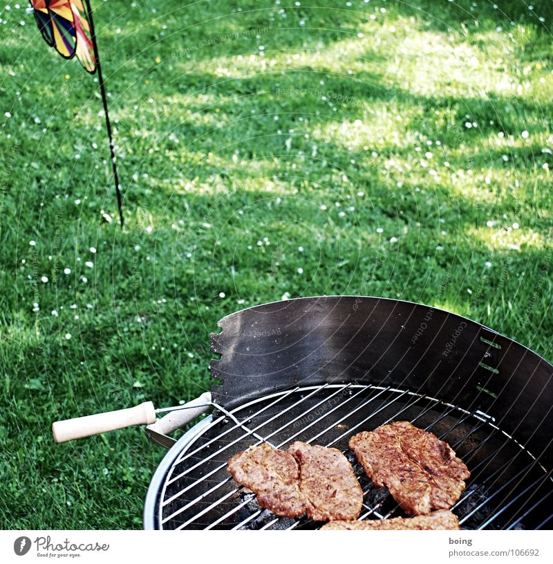 have a barbecue Barbecue (apparatus) Barbecue (event) Bratwurst Small sausage Steak Picnic Summer Vacation & Travel Leisure and hobbies Sunday Public Holiday