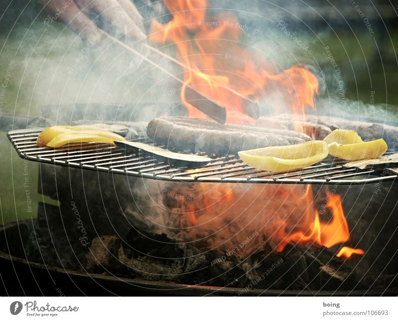 have a barbecue Barbecue (apparatus) Barbecue (event) Bratwurst Small sausage Picnic Summer Vacation & Travel Leisure and hobbies Sunday Public Holiday