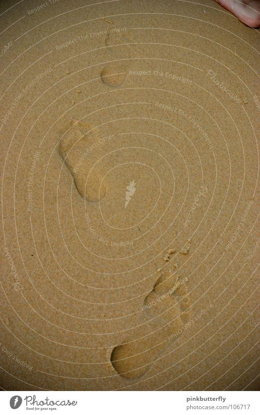 Water Ocean Beach Feet Lake Sand Waves Coast Wet Earth Tracks Footprint Toes Barefoot Legacy