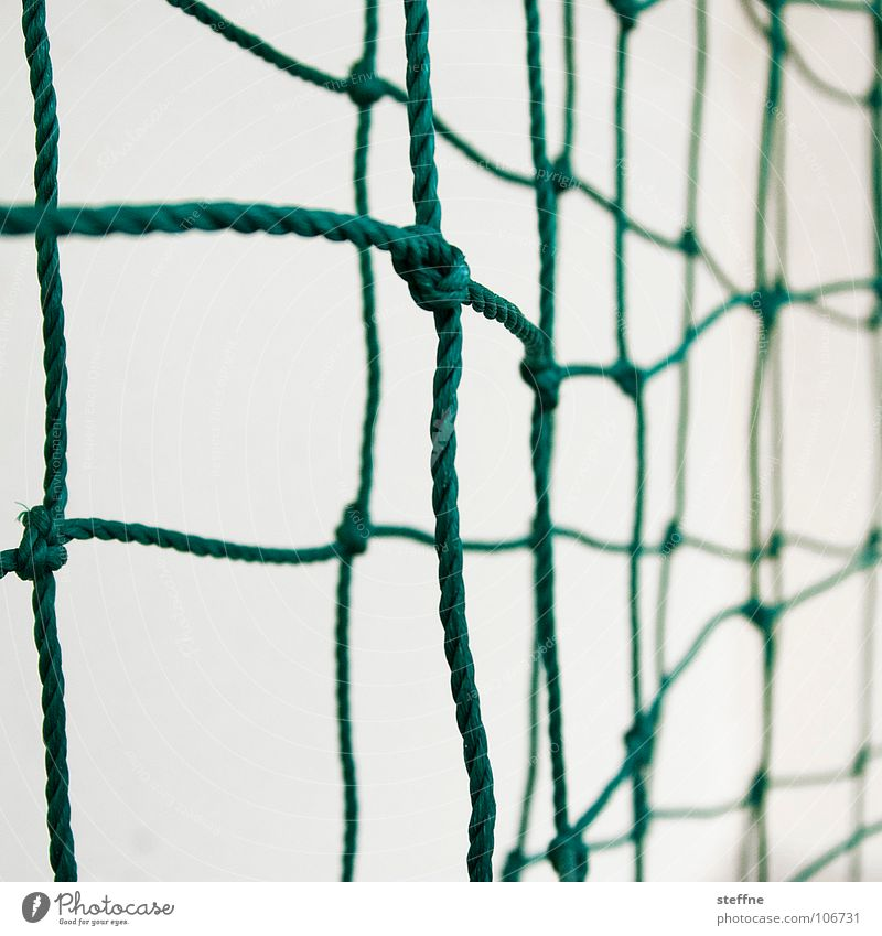 White Green Sports Playing Rope Network Communicate String Ball Contact Society Teamwork Relationship Career Fishery