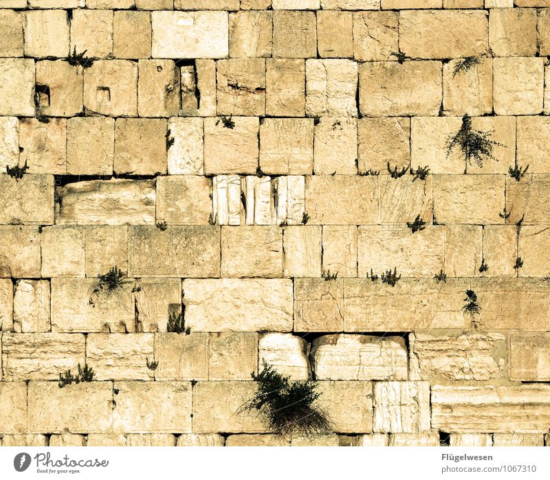 Architecture Building Wall (barrier) Religion and faith Manmade structures Landmark Monument Tourist Attraction Public Holiday Prayer Rectangle Israel