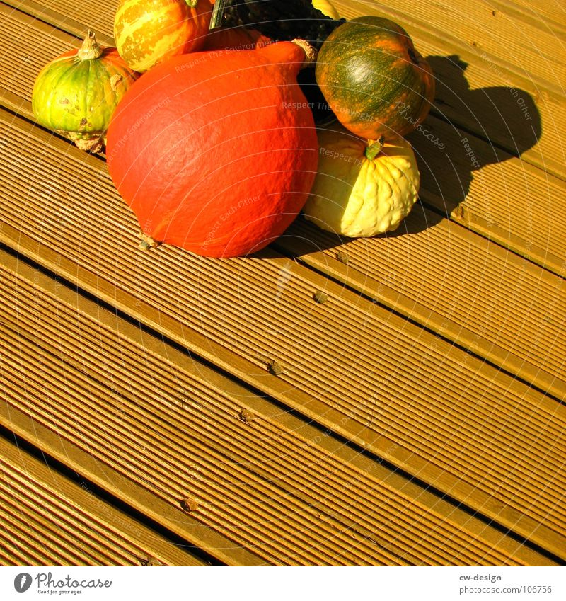 Green Plant Red Face Yellow Wood Sweet Cooking & Baking Round Gastronomy Vegetable Trade Tradition Hallowe'en Embellish Wooden floor