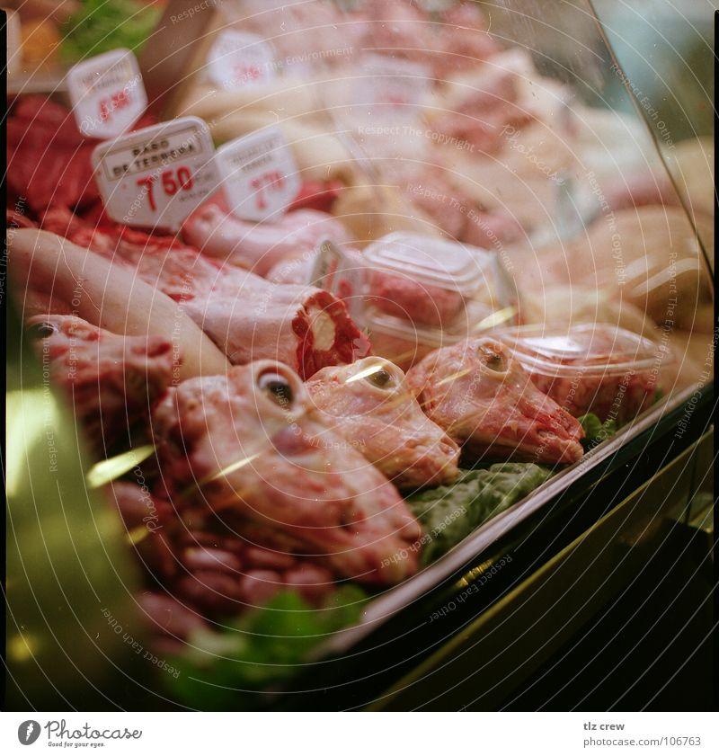 Nutrition Food Spain Meat Markets Barcelona Dead animal