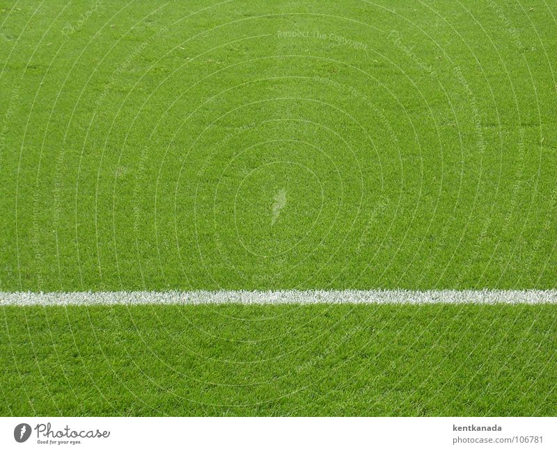 carpet of grass Sports Ball sports Soccer Sporting Complex Football pitch Spring Meadow Looking Lawn Colour photo Exterior shot Pattern Structures and shapes