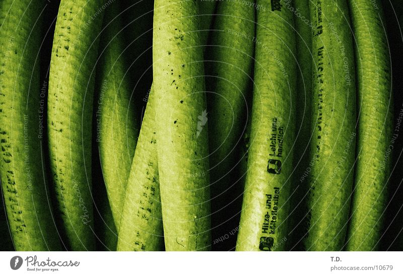 hose salad Hose Green Wet Round Photographic technology Garden Cast Detail Flexible