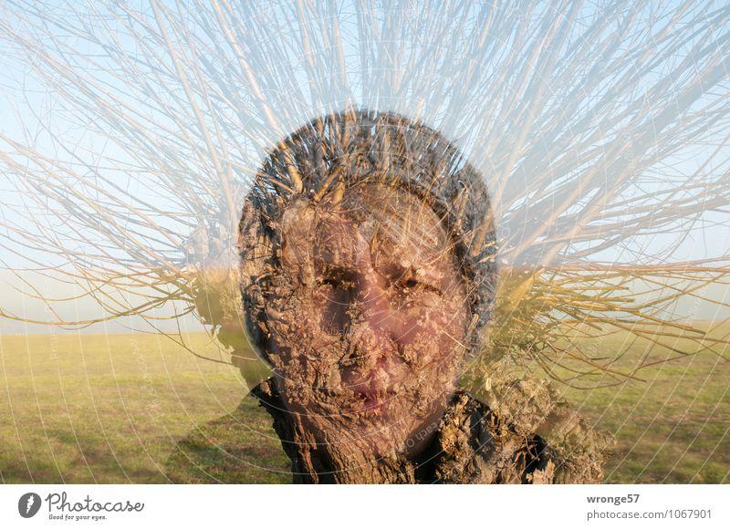 Human being Woman Blue Green Tree Adults Face Meadow Feminine Brown Head Horizon 45 - 60 years Branch Female senior Pasture