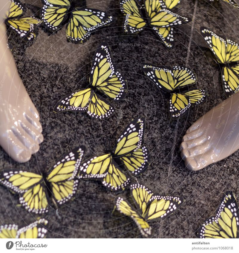 Beautiful Summer Joy Yellow Spring Style Gray Stone Feet Fashion Lifestyle Design Decoration Elegant Tourism Happiness