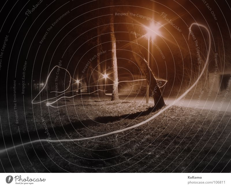 The light in the park Light Park Night Loneliness Transience Black Red White Soft Emotions Black & white photo Autumn alone Movement Shadow Free Calm spieglung