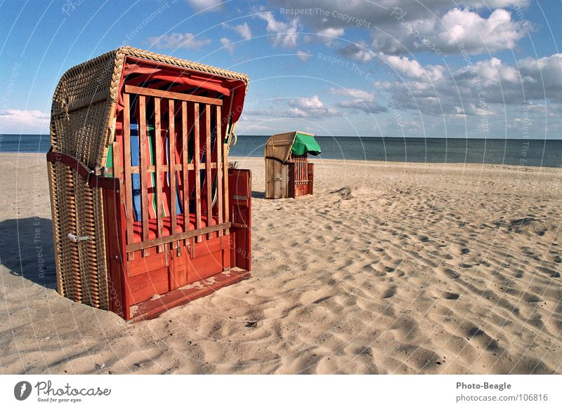 Ocean Beach Vacation & Travel Autumn Lake Sand Waves Grief End Leisure and hobbies To fall Transience Longing Baltic Sea Past Seagull