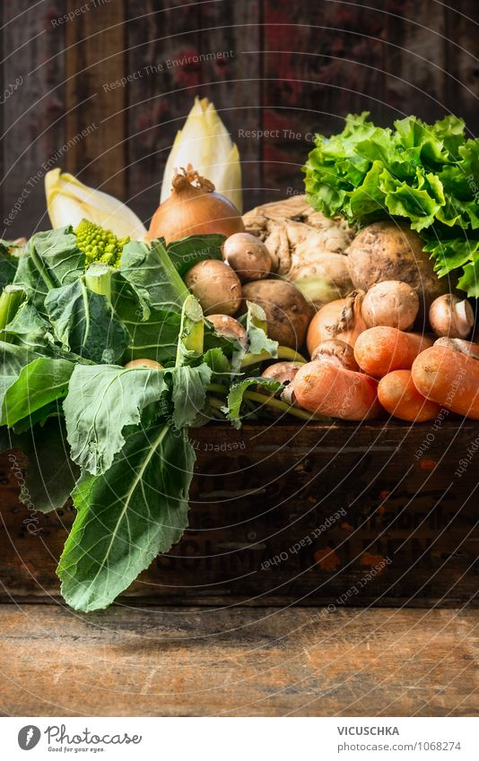Organic vegetables on an old wooden table Food Vegetable Lettuce Salad Herbs and spices Nutrition Organic produce Vegetarian diet Diet Style Design