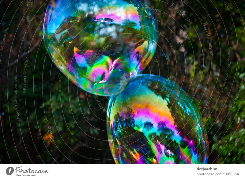 2 Big colourful iridescent soap bubbles -,Ufos on approach - Joy Harmonious Summer Drops of water Beautiful weather Park Queensland Australia Deserted Water