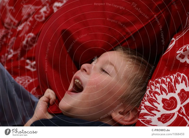 Laughing boy in bed Human being Masculine Child Boy (child) Infancy 1 1 - 3 years Toddler 3 - 8 years Bedclothes Duvet Cushion Laughter Romp Happiness luck Red