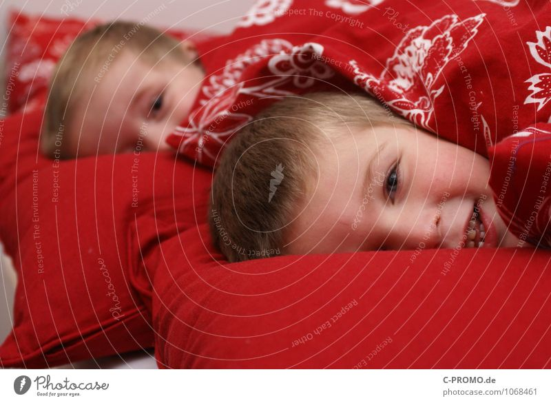 Two boys nestled in bed Human being Masculine Child Toddler Boy (child) Brother Family & Relations Friendship Infancy 2 1 - 3 years 3 - 8 years Bedclothes Duvet