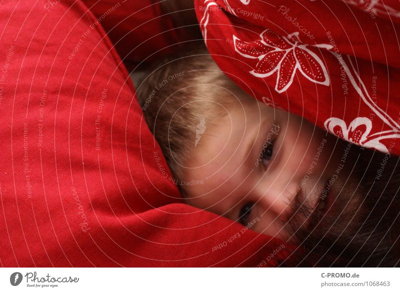 Boy cuddled up in bed Human being Child Boy (child) Family & Relations Infancy 1 1 - 3 years Toddler 3 - 8 years Bedclothes Cuddly Red Joy luck Happiness
