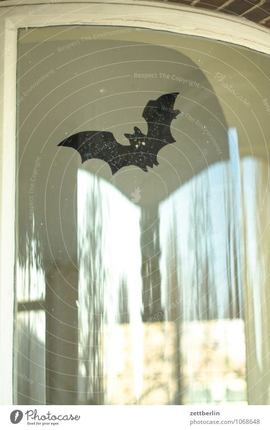bat Bat Dracula Ghosts & Spectres  Dramatic Dramatic art say Creepy Hallowe'en Frightening Carnival Flying Wing Glass Window Window pane Slice Label Pane Comic