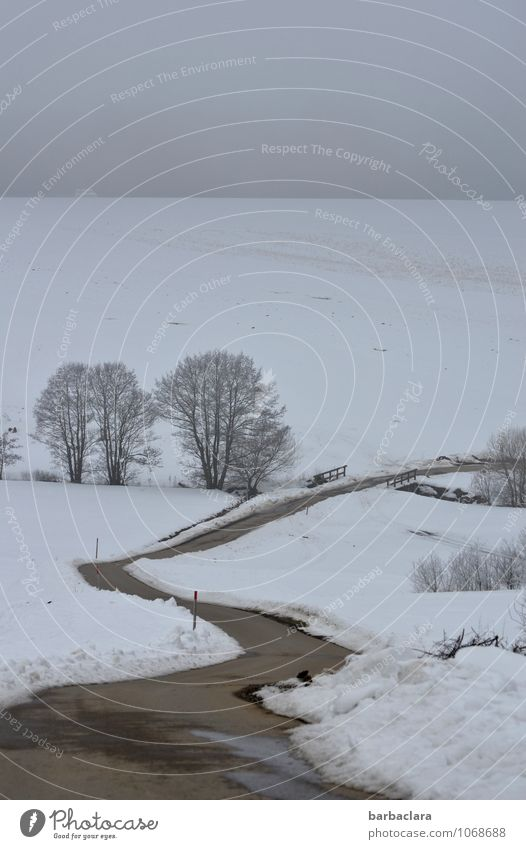 Sky Nature White Relaxation Landscape Calm Far-off places Winter Cold Environment Street Emotions Snow Lanes & trails Healthy Moody