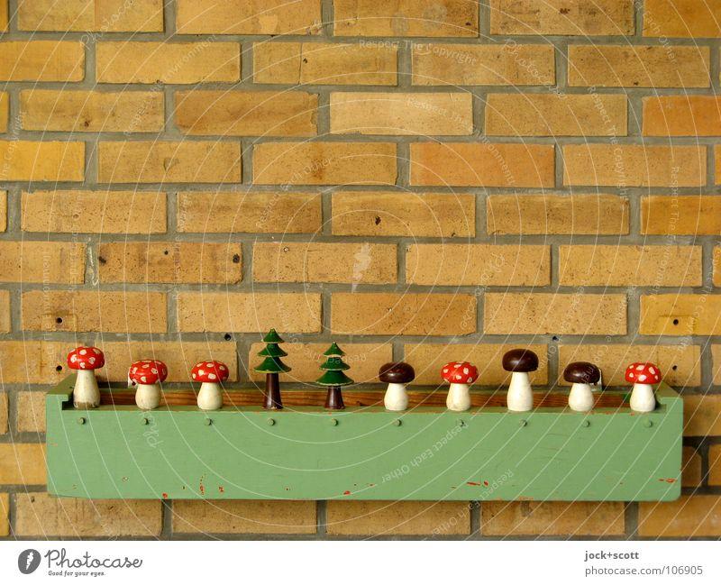 Beautiful Tree Joy Wall (building) Wall (barrier) Playing Line Beginning Creativity Mushroom Touch Retro Sign Planning Kitsch Toys