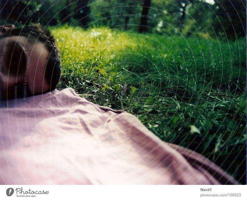 Man Nature Green Calm Relaxation Meadow Head Grass Pink Lie Sleep Lawn Peace Fatigue Blanket Boredom