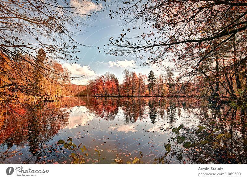 Sky Nature Beautiful Colour Relaxation Landscape Leaf Calm Forest Life Autumn Natural Think Lake Horizon Park