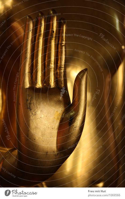 Buddha's golden hand Androgynous Chest Hand Work of art Sculpture Culture Metal Gold Glittering Cold Wisdom Belief Religion and faith Hope Inspiration