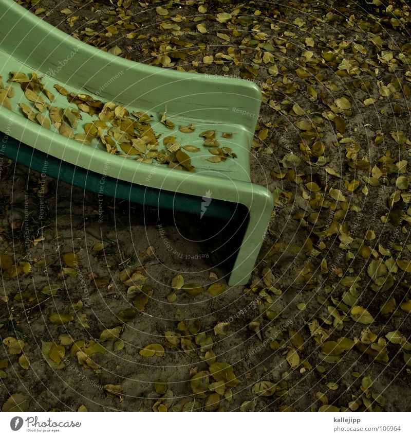 Green Joy Leaf Yellow Autumn Playing Sand Earth Room Infancy Mouth Places Free Floor covering Lawn Toys