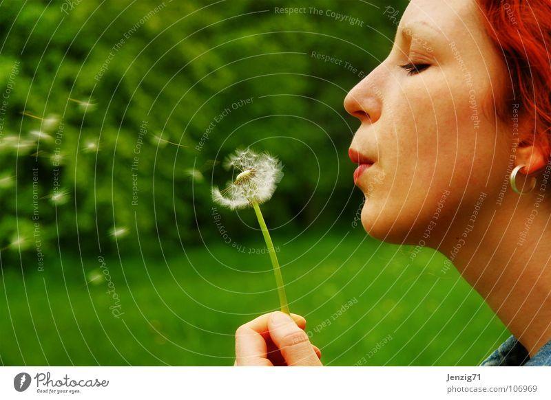 Woman Green Summer Face Meadow Autumn Flying Umbrella Dandelion Blow Seed Distribute Portrait photograph