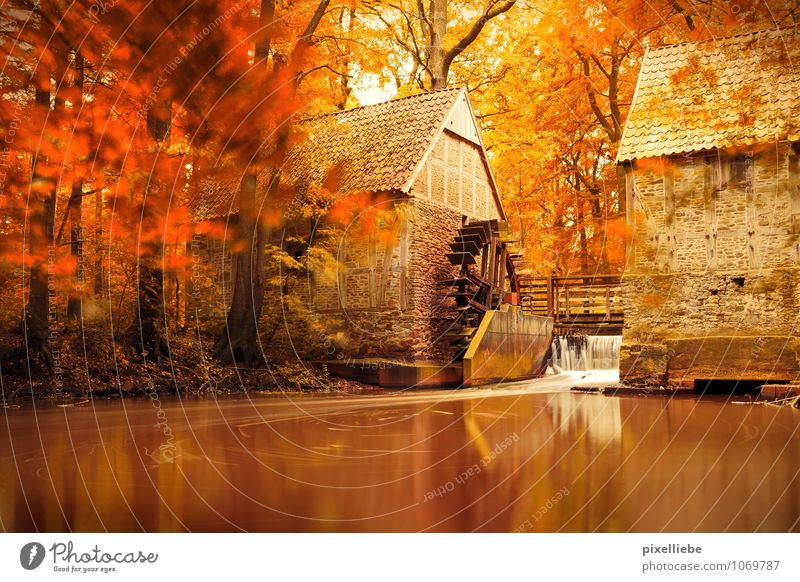 Mill Autumn Calm Nature Water Sunlight Beautiful weather Tree Pond Lake Brook River Waterfall Relaxation Natural Brown Orange Surface of water Water reflection