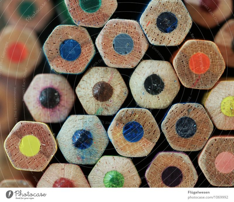 Colour Playing Wood Art Leisure and hobbies Beginning Many New Draw End Pen Stack Kernels & Pits & Stones Flat Crayon Side by side