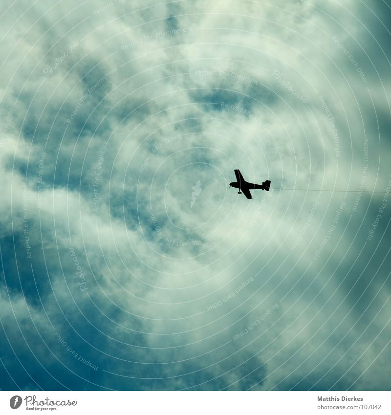 Vacation & Travel Clouds Lanes & trails Bird Small Airplane Environment Success Rope Aviation Dangerous Threat Airport Direction Environmental pollution Fastening