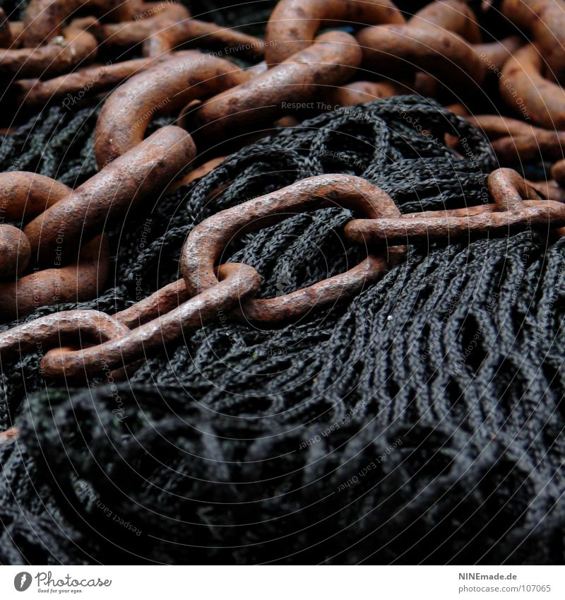 Black Dark Playing Freedom Metal Brown Together Dangerous Rope Force Might Network To hold on Plastic Net Strong
