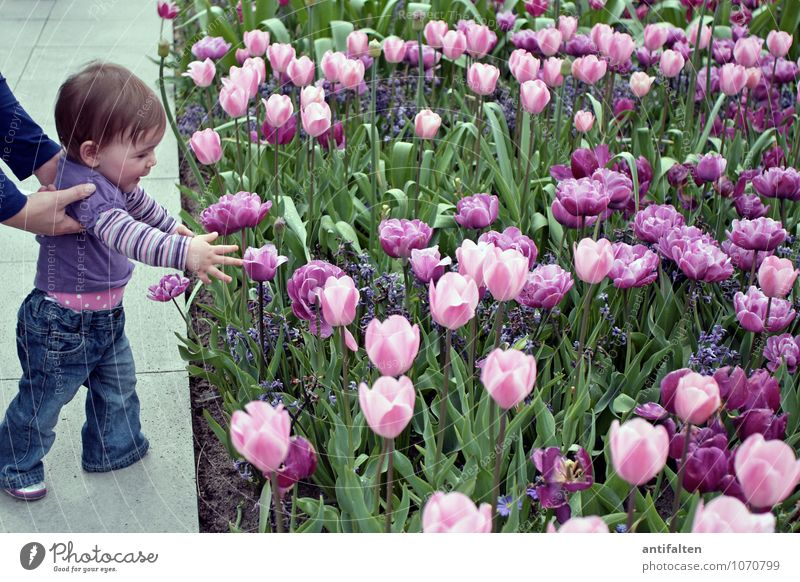 Human being Child Plant Hand Flower Leaf Landscape Girl Face Blossom Spring Garden Going Head Park Body