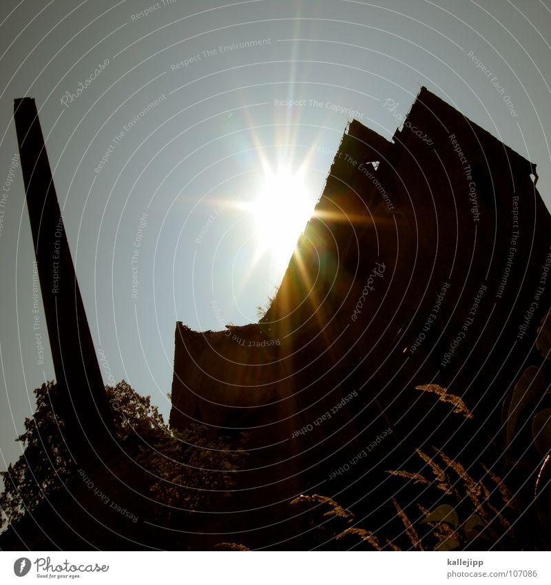 Sun Black Loneliness Dark Meadow Grass Sadness Wall (barrier) Factory Roof Broken Derelict Decline Ruin GDR Shabby