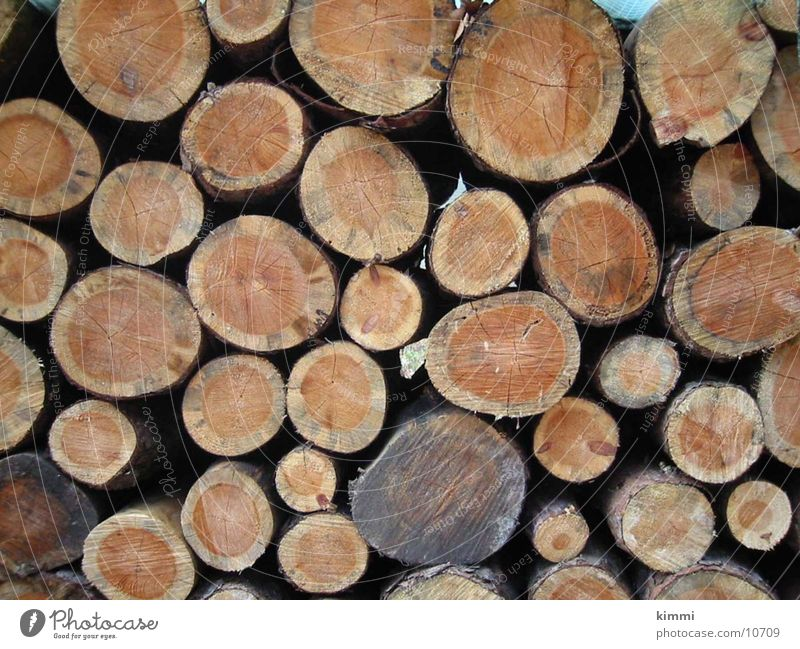 round timber Tree trunk Wood tree rings