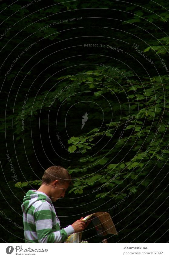 skywalker Forest Tree Man Loneliness Hand Sweater Hooded (clothing) Striped Planning Aimless Map Search Find Leaf boy Ear Neck Futile To hold on Think face