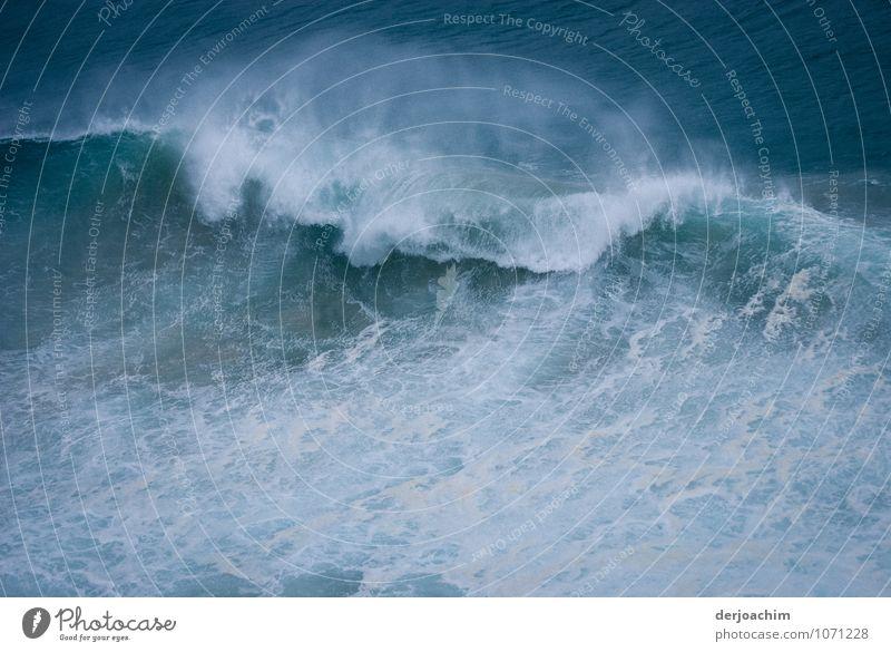 Cyclone foothills Joy Summer Waves Environment Water Storm Coast Ocean Pacific Ocean Queensland Australia Deserted Observe Discover Looking Exceptional